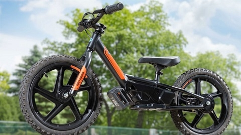 Cuál Bicicleta Eléctrica Comprar