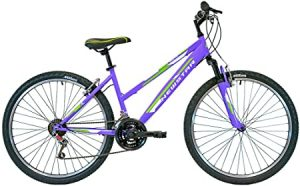 Datos Técnicos Bicicleta New Star BTT 26